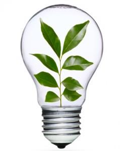 green leafy lightbulb